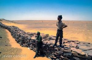 Sahara-13